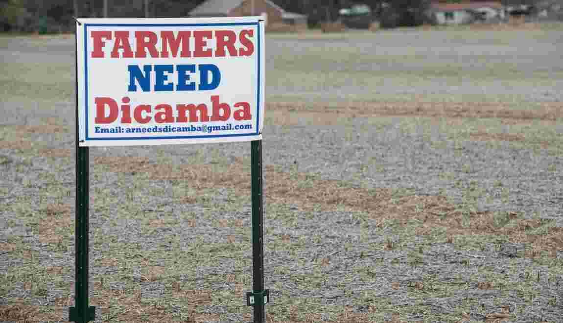 Les Etats-Unis redonnent leur feu vert à un pesticide controversé
