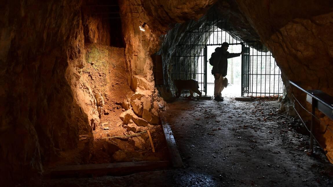 Néandertaliens et Denisoviens, cousins de l'Homme, ont divergé plus tôt qu'estimé
