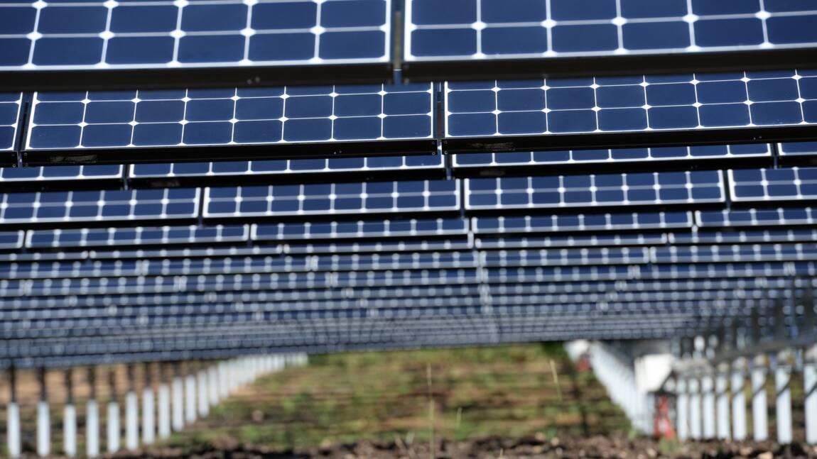 Photovoltaïque: Royal annonce deux nouveaux appels d'offres