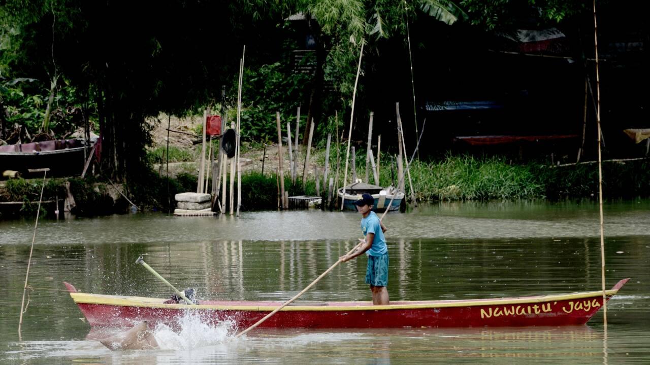 Indonésie: à Jakarta, une nouvelle vie au bord des fleuves nettoyés
