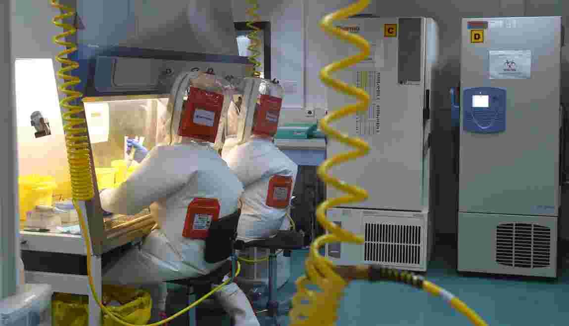 Les virus géants, inventeurs de leurs gènes?