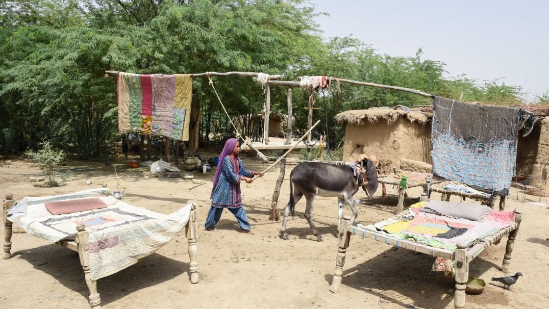 Au Pakistan, des régions entières vulnérables face au réchauffement climatique