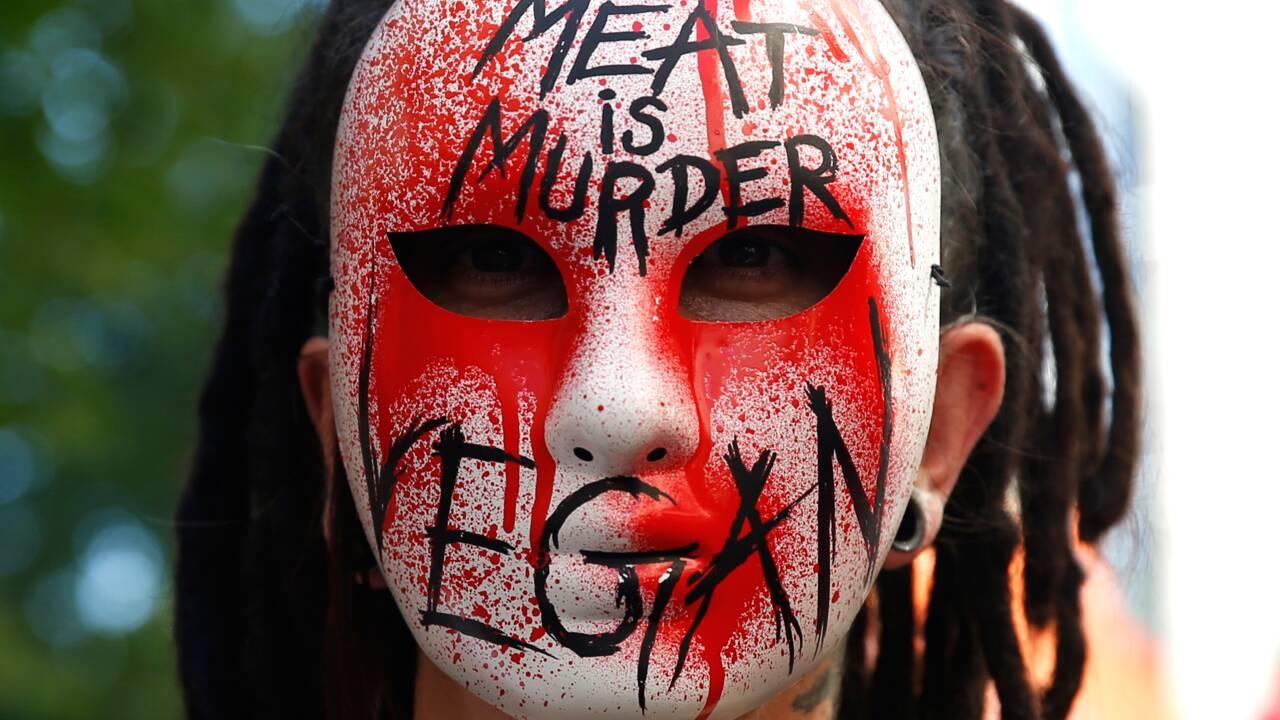 La viande en accusation: et pourtant la filière se décarcasse