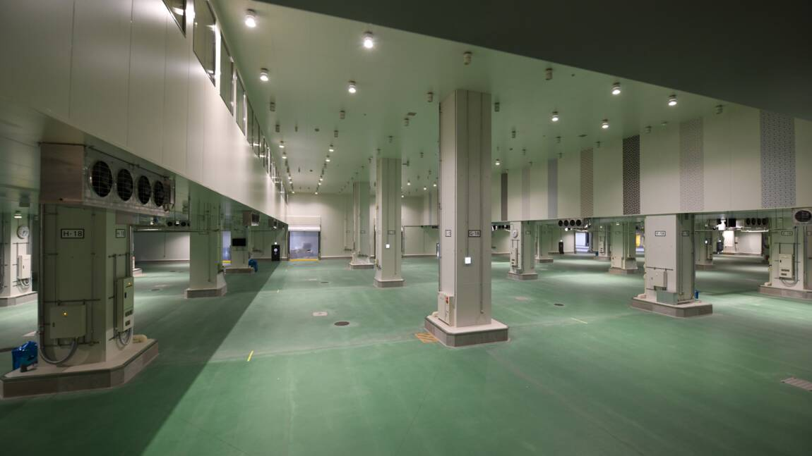 Problèmes d'eau persistants au futur marché aux poissons de Tokyo
