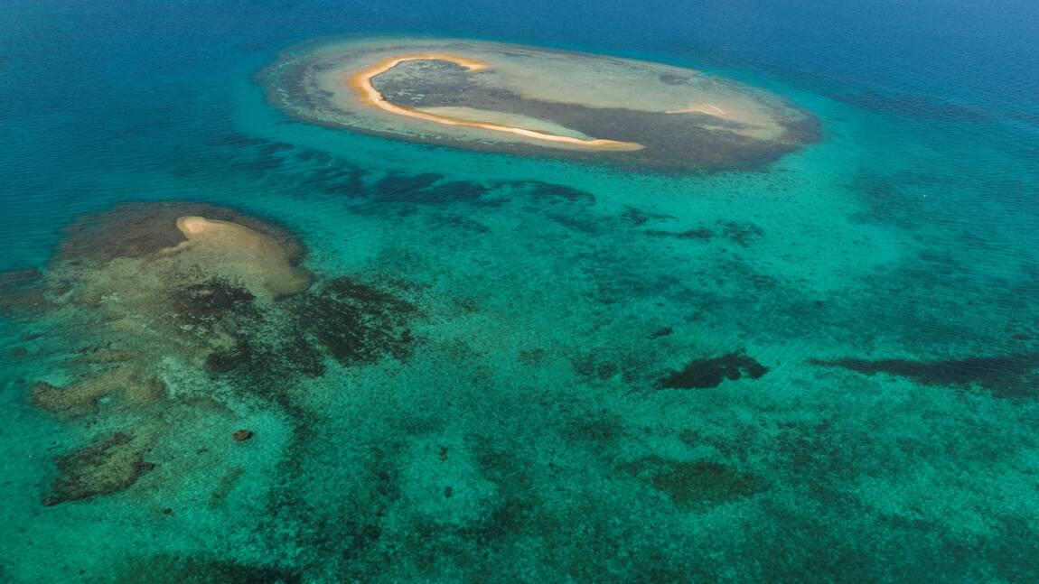 """Lauréate des """"Territoires d'innovation"""", la Calédonie mise sur la mer de Corail"""
