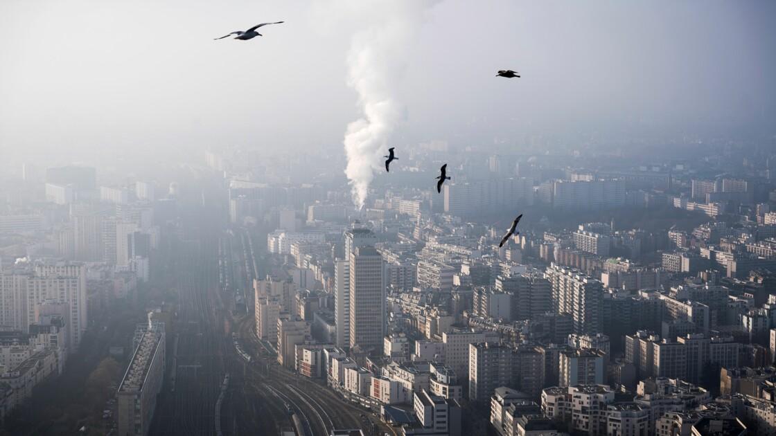 Pollution: gratuité du stationnement résidentiel samedi à Paris