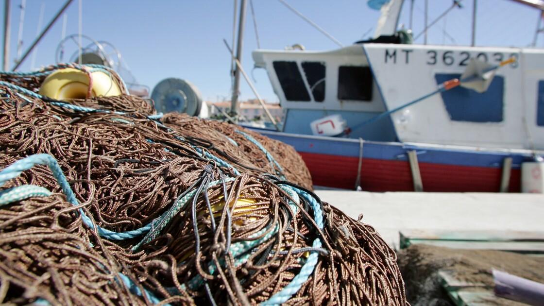 Le contrôle des pêches est insuffisant dans l'UE
