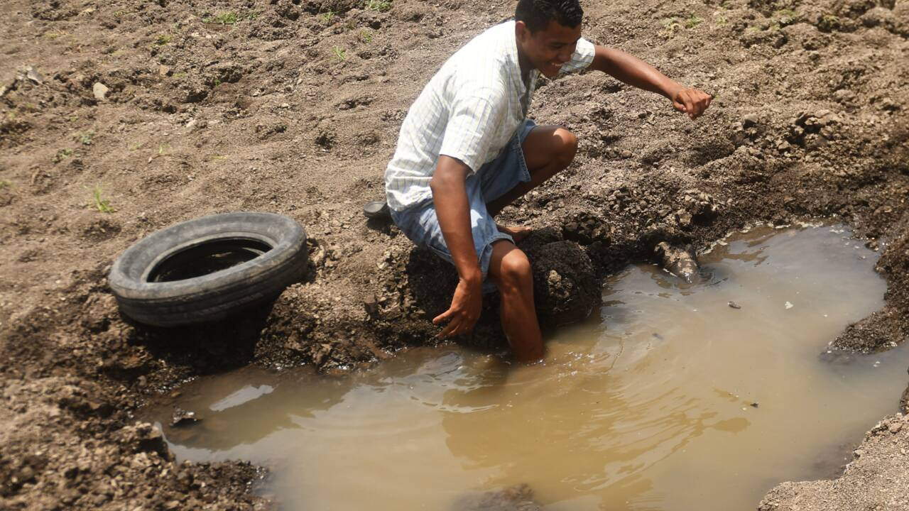 Au Guatemala, une lagune disparaît, victime du changement climatique