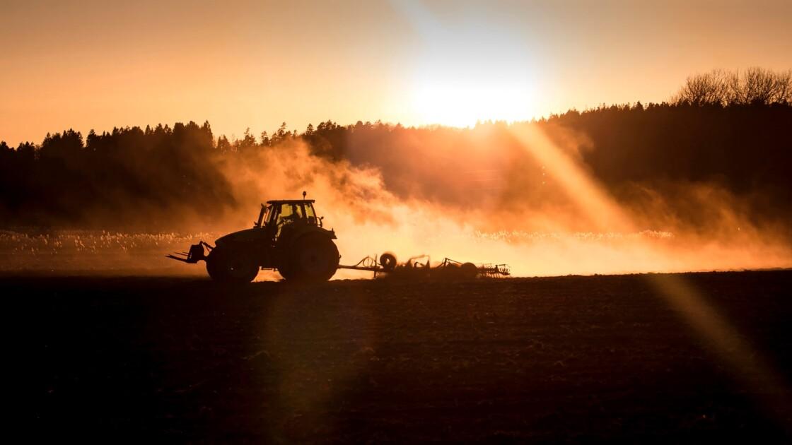 Agriculture raisonnée vs. agriculture intensive : des modèles qui ont montré leurs limites ?