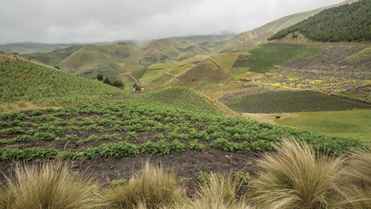 EXPO - Des oasis au sommet des Andes... et le long du canal Saint-Martin