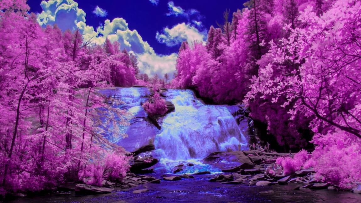 L'appareil photo infrarouge