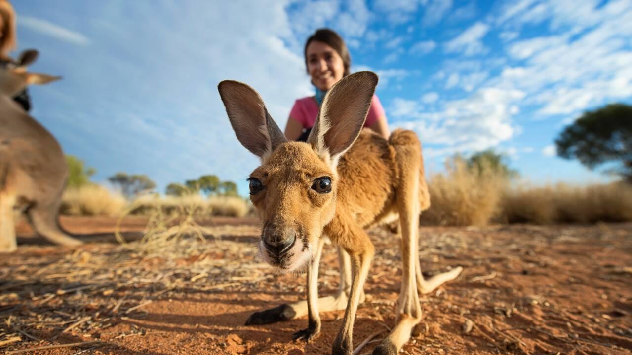 AliceSprings, «Capitale» du désert australien