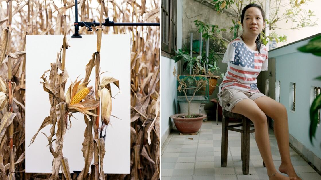 Monsanto : l'histoire d'un désastre sanitaire