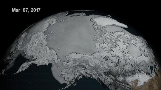 Les glaces hivernales de l'Arctique au plus bas depuis 38 ans