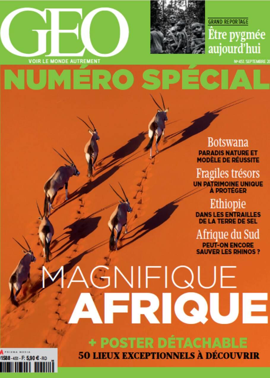 Menace extrême sur les rhinocéros d'Afrique