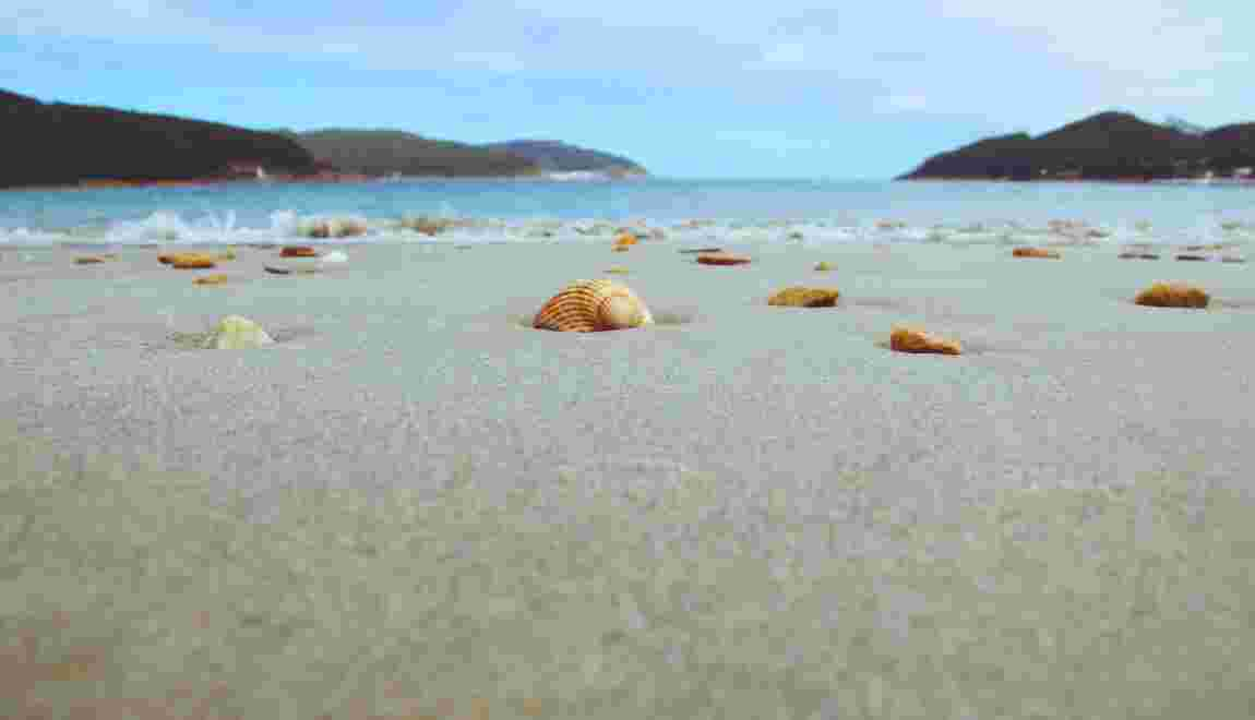 Sable, coquillages... La loi nous autorise-t-elle à rapporter des souvenirs de la plage ?