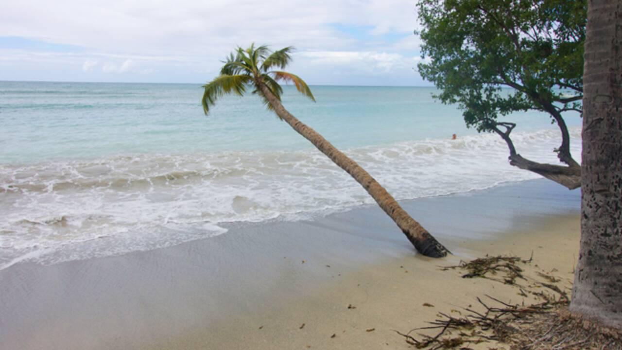 Lutter ou couler : la Martinique face à la montée des eaux