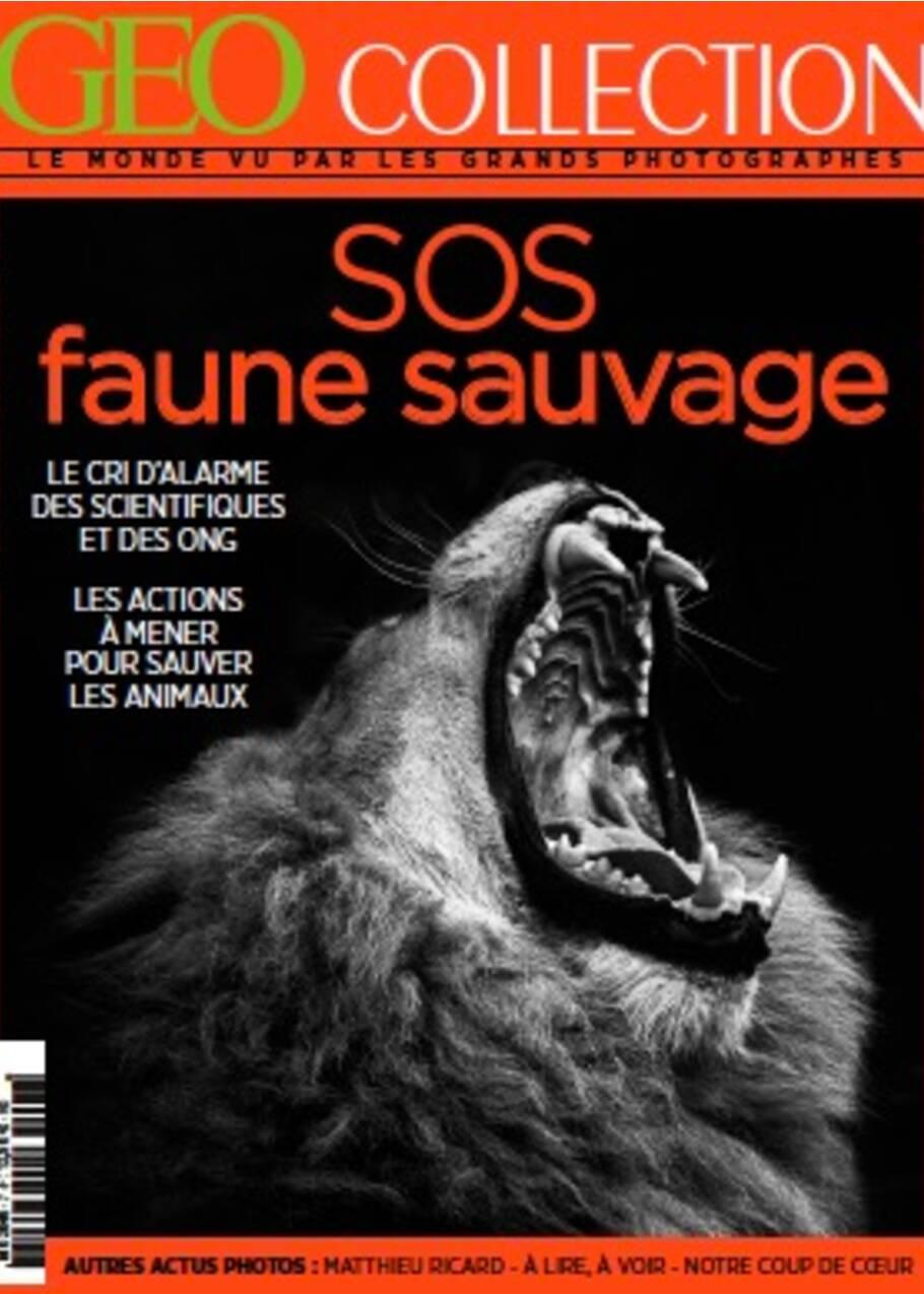 SOS faune sauvage, un cri d'alarme dans le nouveau GEO Collection