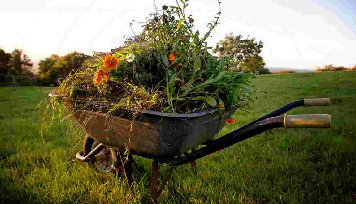 Déchets verts – gare à la pollution naturelle