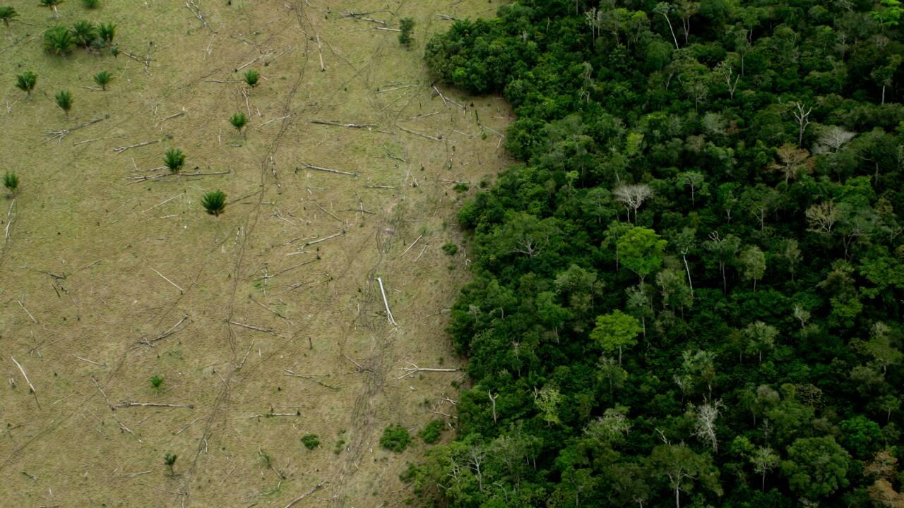 Ressources naturelles : à partir de ce 2 août, l'humanité vit à crédit