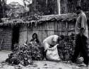 VIDÉO - Immersion chez les Pygmées de Centrafrique