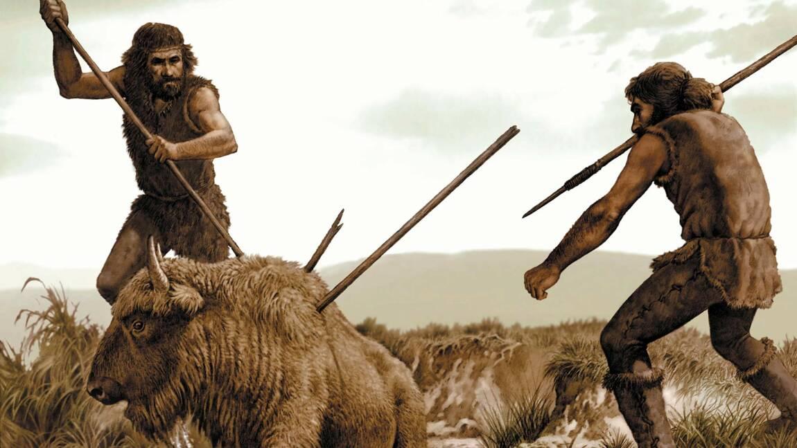 Cro-Magnon, un être sans défense ? Plutôt un chasseur aguerri !