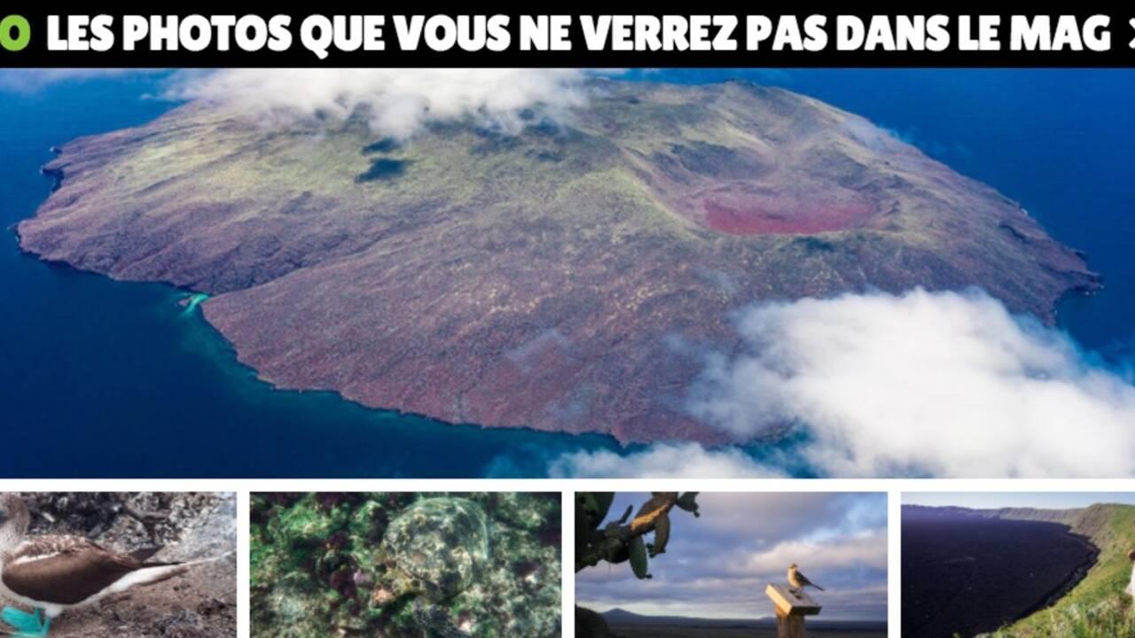 On a rencontré les tortues géantes des Galápagos