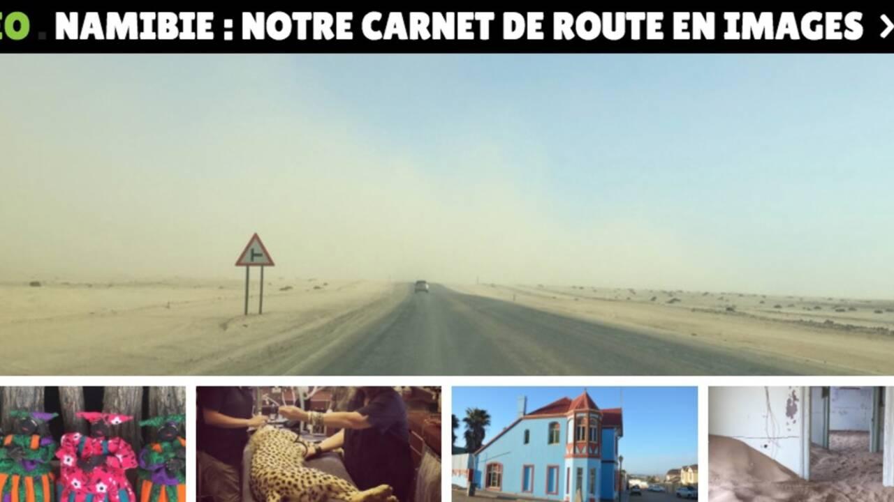 """VIDÉO – Namibie : Laurie Marker, la """"Dame aux guépards"""""""