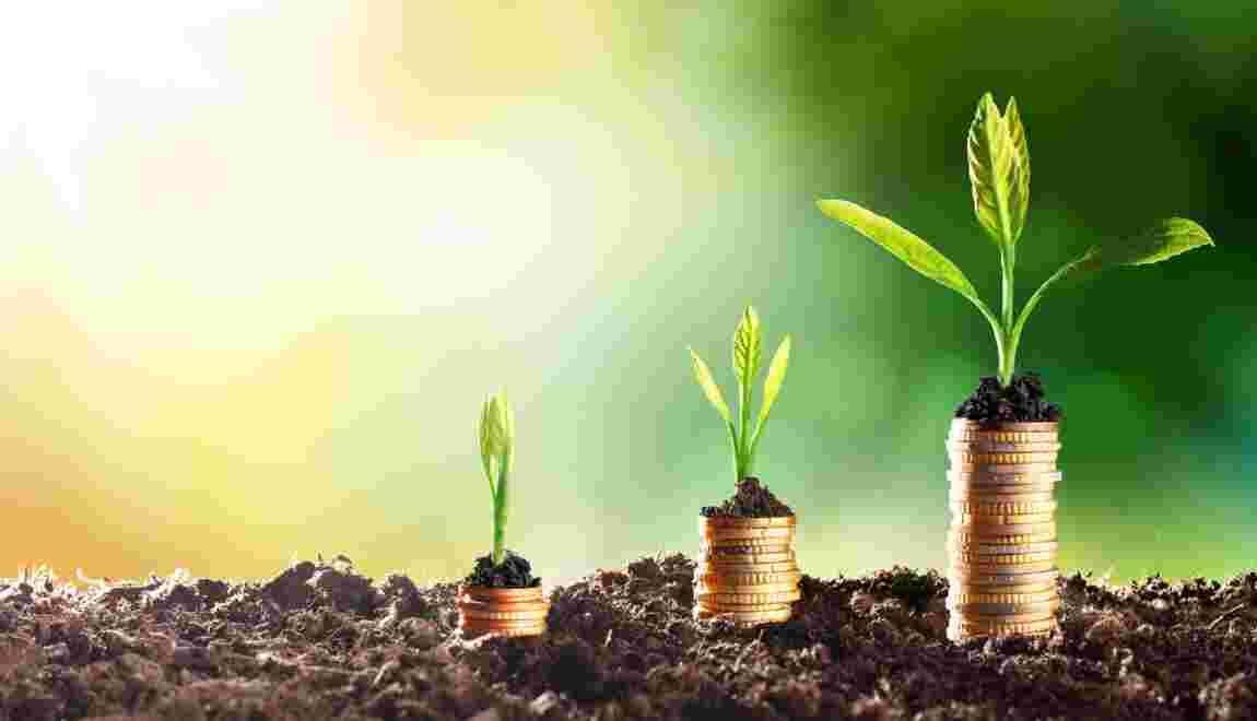 Croissance verte, la philosophie du développement durable transposée à l'économie