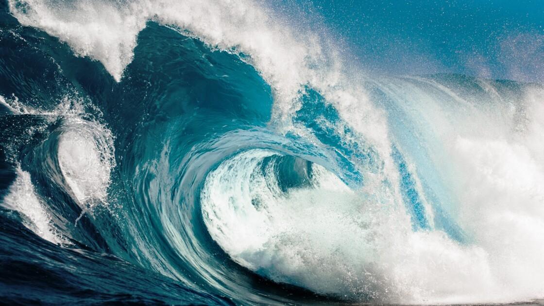 Énergie houlomotrice : des vagues d'électricité