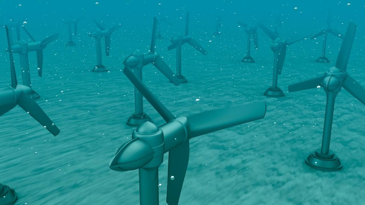 Energie marémotrice : de l'eau à la lumière