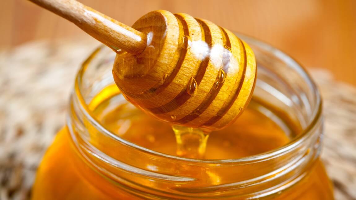 Des apiculteurs découvrent du glyphosate dans leur miel et portent plainte contre Bayer