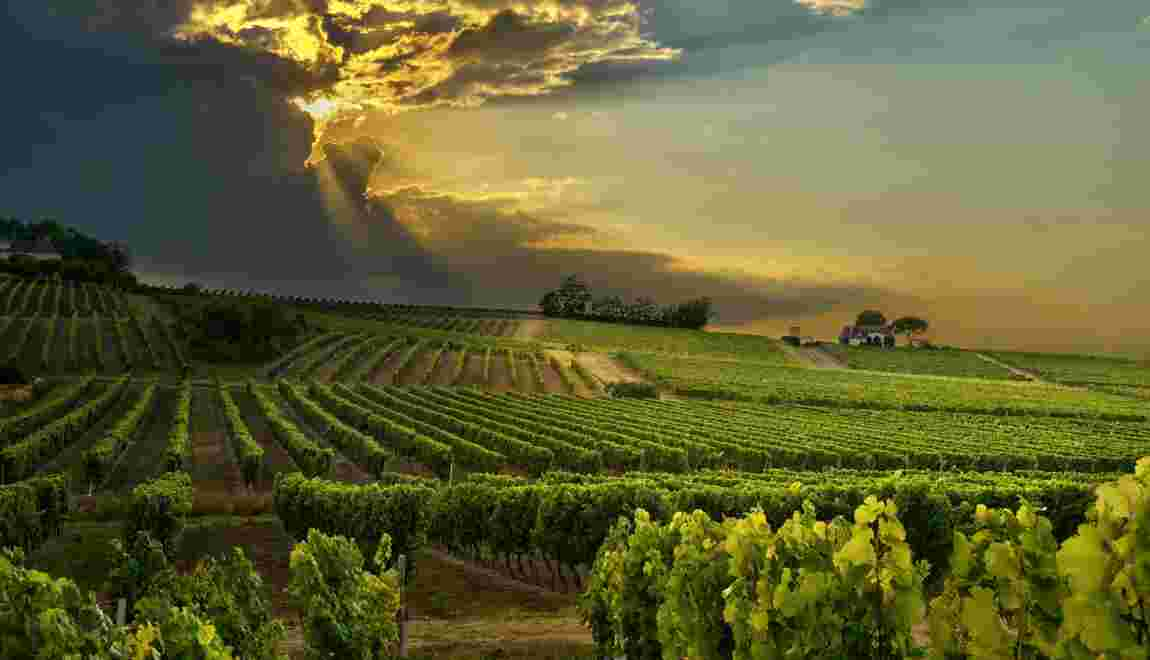 FEOGA : l'instrument financier de la Politique agricole commune