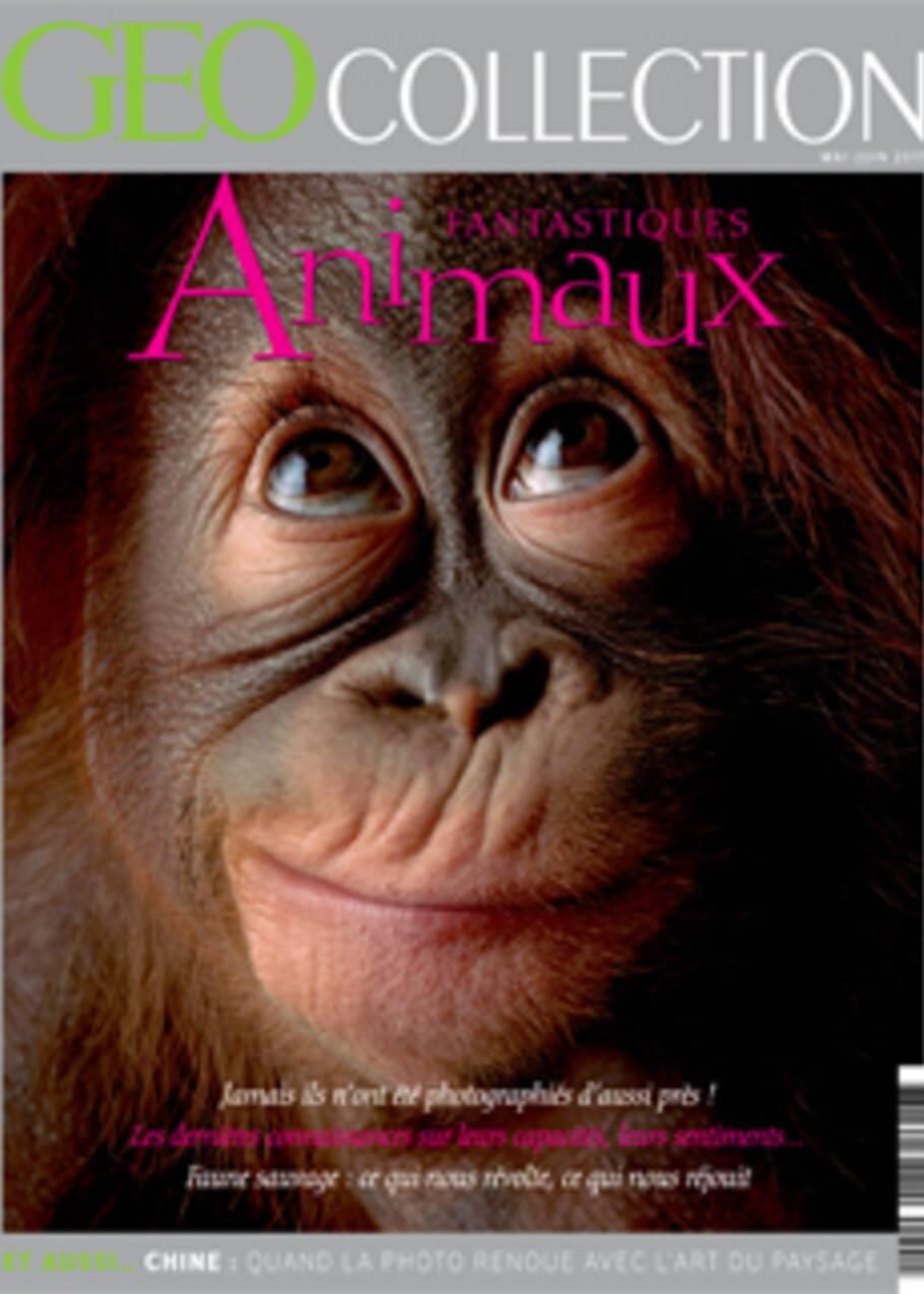Photo animalière : les conseils des grands