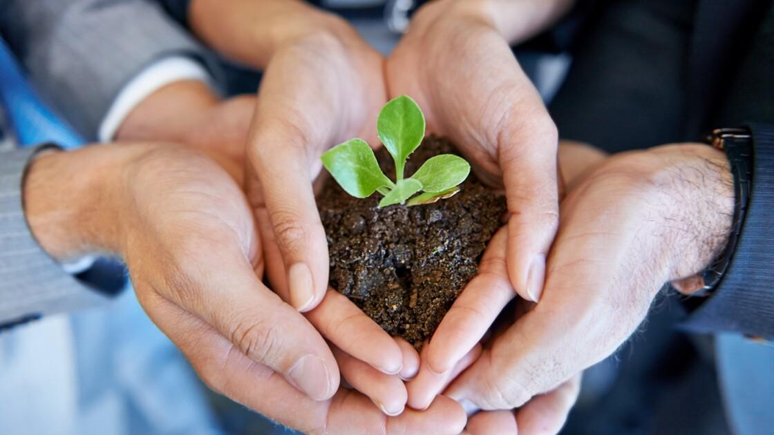 La Green Tech Verte, un incubateur de start-up pour les « jeunes pousses » de l'entreprise
