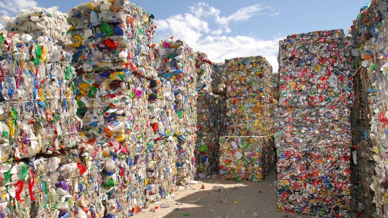 La biodégradabilité, une notion au cœur des problématiques environnementales