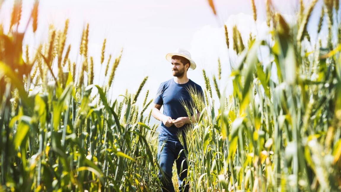 Qu'est ce que la PAC (politique agricole commune) ?