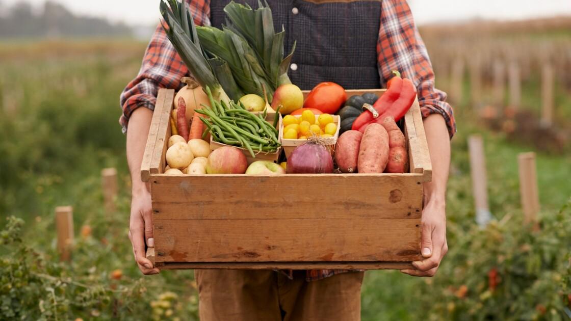 Label Bio, mieux consommer pour soi et pour la planète