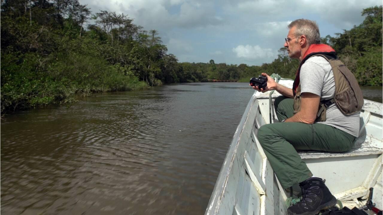 Montagne d'or, récif de l'Amazone… Les combats de Lambert Wilson pour l'environnement