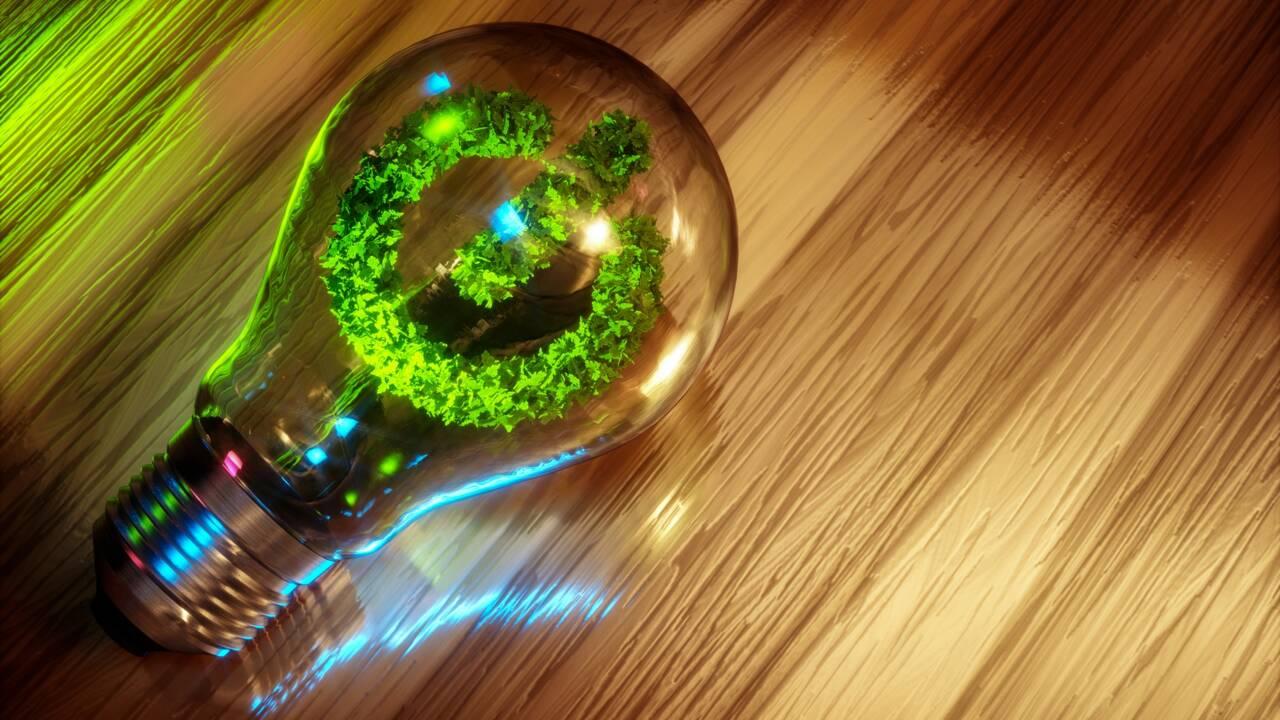 Lampe fluocompacte : l'éclairage basse conso et écolo