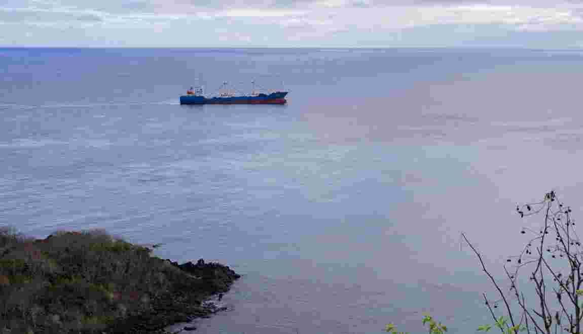 """Pêche illégale dans les Galápagos : """"C'est la première fois qu'on est confrontés à une telle situation"""""""