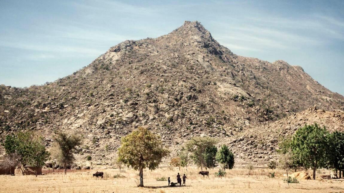 Cameroun : Waza, un parc sous la menace terroriste