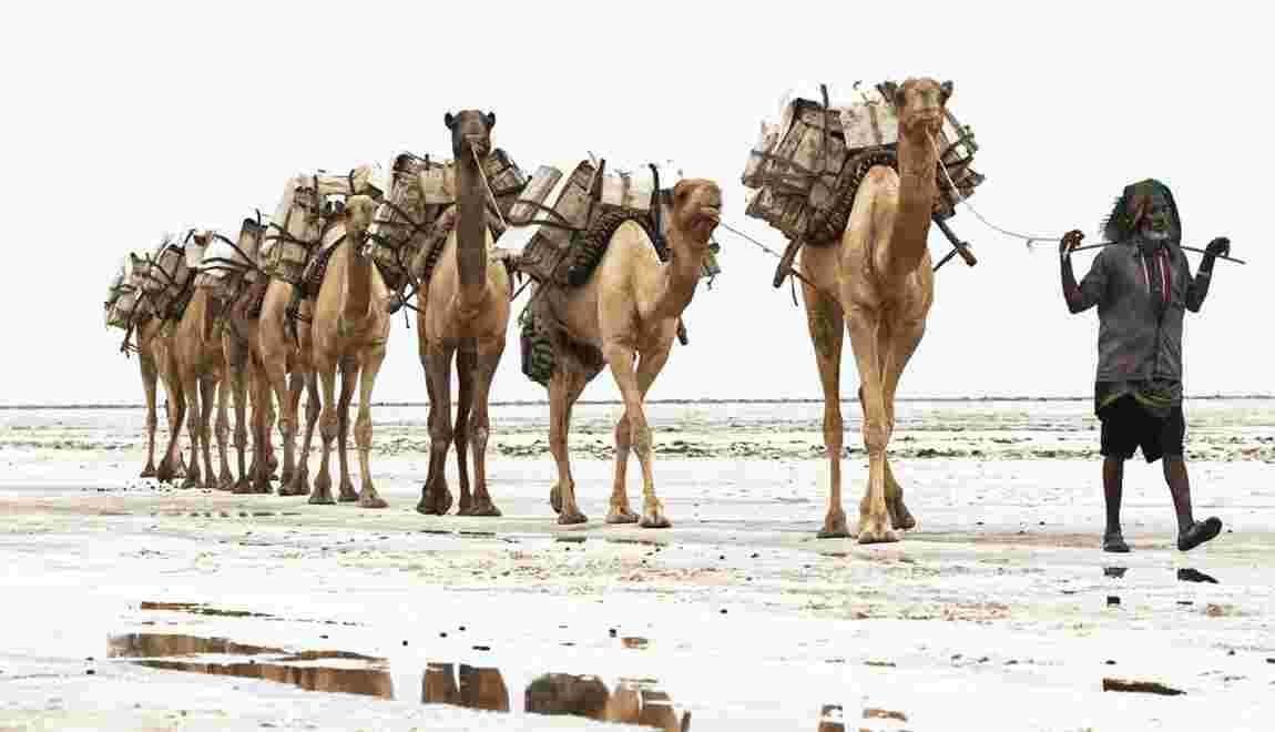 VIDÉO - En Ethiopie, avec les Afars du Danakil