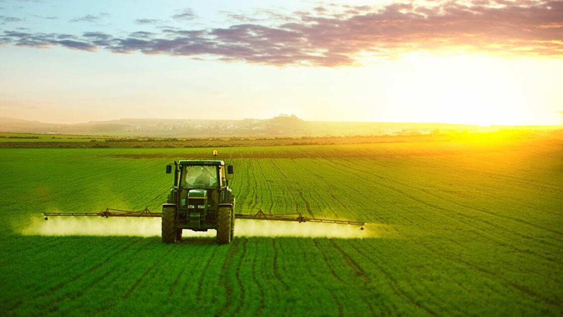 Le phosphate, un enjeu mondial pour le siècle à venir
