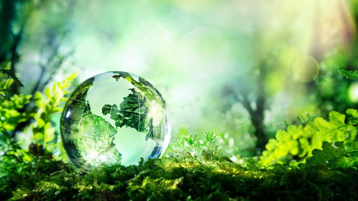 Le Sommet de la Terre, qu'est-ce que c'est ?