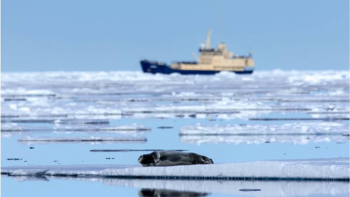Avec la fonte des glaces, les Russes inaugurent une nouvelle route maritime