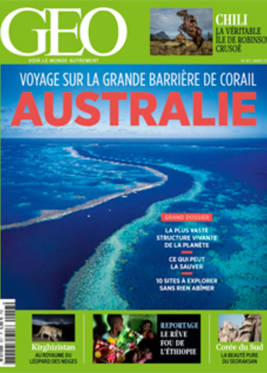 VIDÉO - Plongez dans la Grande Barrière de corail