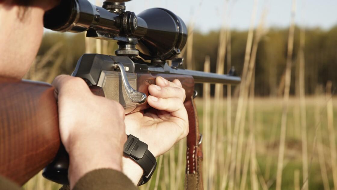 Safaris de chasse en Afrique australe : Au bonheur des flingueurs