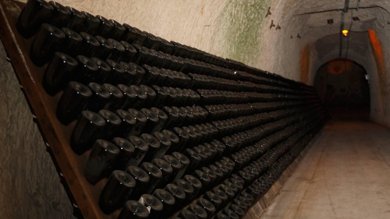 Dans le labyrinthe des caves de Champagne