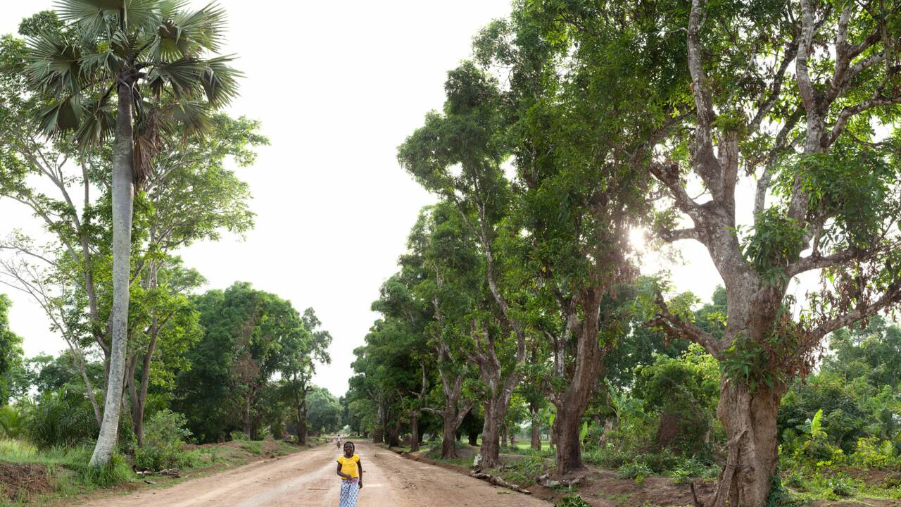 Niangara, en RDC : la magnifique Afrique de Titouan Lamazou